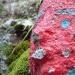 roche_peinte_3.3