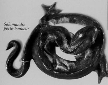 medium_salamandre_porte_bonheur.jpg