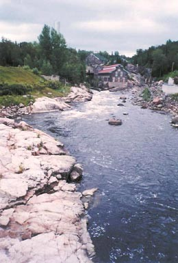 medium_site_pulperie_Chicoutimi.jpg