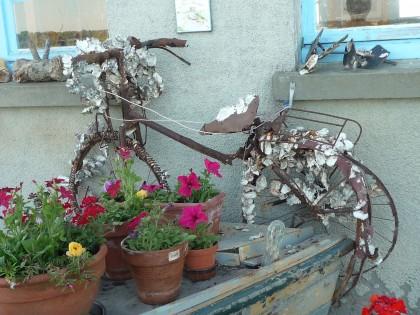 vélo huitres.JPG