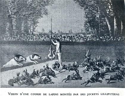 course de lapins.jpg