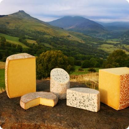 sous les volcans les fromages.jpg