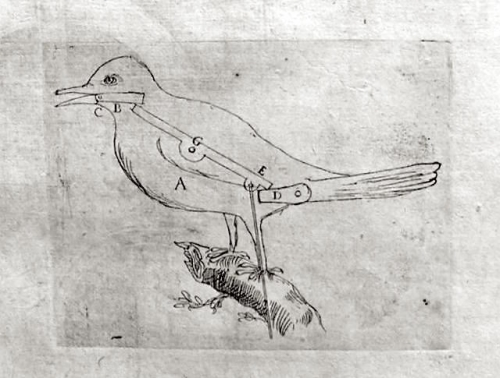 hortus-birdp.jpg