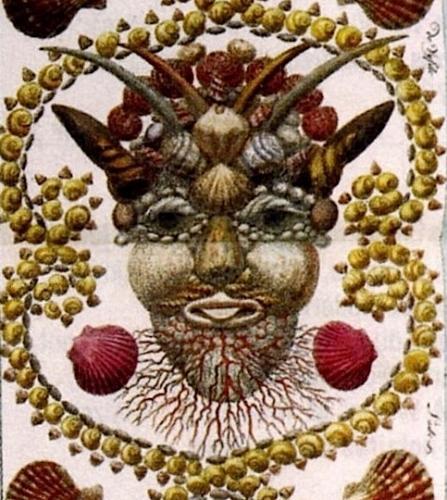 détail Locupletissimi rerum naturalium thesauri.jpg
