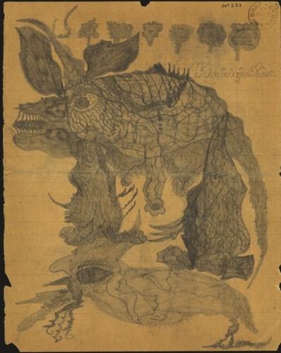 rhino noir duf.jpg
