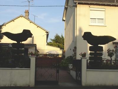 2 colombes.jpg