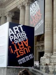 entrée Art Paris 2010.JPG
