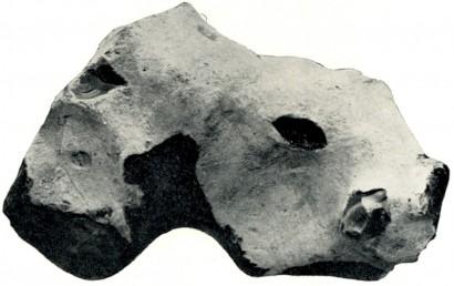 fig 18.jpg