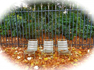 Cet automne larus rime avec fleurus animula vagula - Le jardin gourmand luxembourg ...