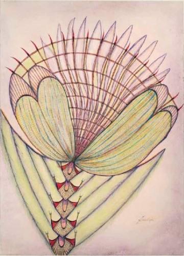 illustration zemankova.jpg